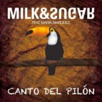 Milk & Sugar – Canto Del Pilon ft. Maria Marquez