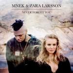 MNEK & Zara Larsson – Never Forget You