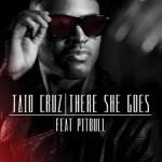 Taio Cruz Ft. Pitbull – There She Goes