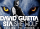 David Guetta – She Wolf (ft. Sia )