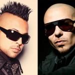 Sean Paul & Pitbull – She Doesn't Mind ( Remix )