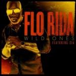 Flo Rida Ft. Sia (David Guetta & Nicky Romero Remix) –  Wild Ones
