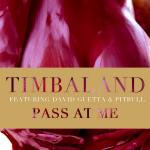 Timbaland ft. David Guetta & Pitbull – Pass At Me