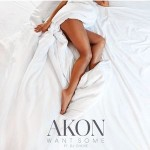 Akon – Want Some ft. DJ Shose