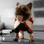 Fedde Le Grand and Holl & Rush – Feel Good