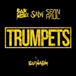 Sak Noel & Salvi Ft. Sean Paul – Trumpets