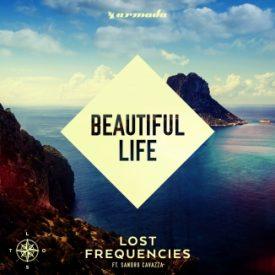 Lost Frequencies  – Beautiful Life ft. Sandro Cavazza
