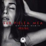Carla's Dreams – Sub Pielea Mea (Midi Culture Remix)