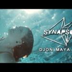 Synapson – Djon Maya Maï  ft. Victor Démé