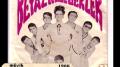 Retrospektif – 1966-Yerli müzik