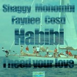 Shaggy – Habibi (I Need Your Love) ft. Mohombi, Faydee  & Costi
