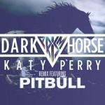 Katy Perry & Juicy J – Dark Horse ft. Pitbull