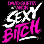 David Guetta Featuring Akon – Sexy Bitch