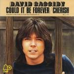 David Cassidy – I Think I Love You