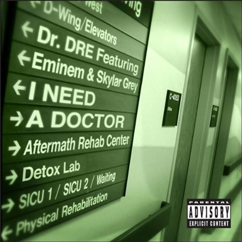Dr. Dre Ft Eminem & Skylar Grey