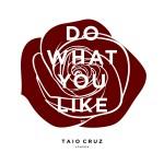 Taio Cruz – Do What You Like