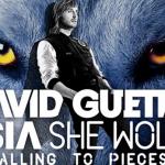 David Guetta – She Wolf (ft. Sia )