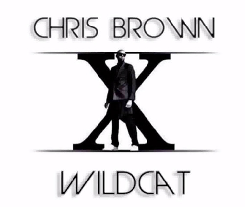 Chris Brown – Wildcat