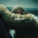 Beyonce – Pray You Catch Me