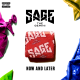 Sage The Gemini – Now And Later