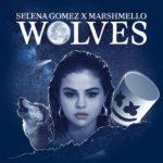 Selena Gomez – Wolves (Marshmello)