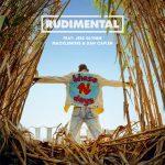 Rudimental – These Days feat Jess Glynne, Macklemore, Dan Caplen