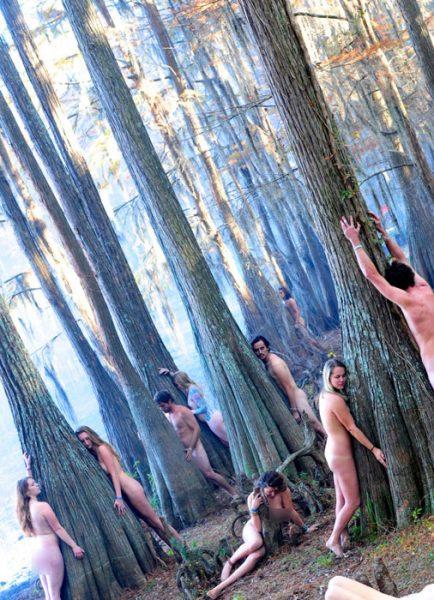 naked-tree3