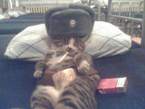 rus-paylasimlari-foto-38